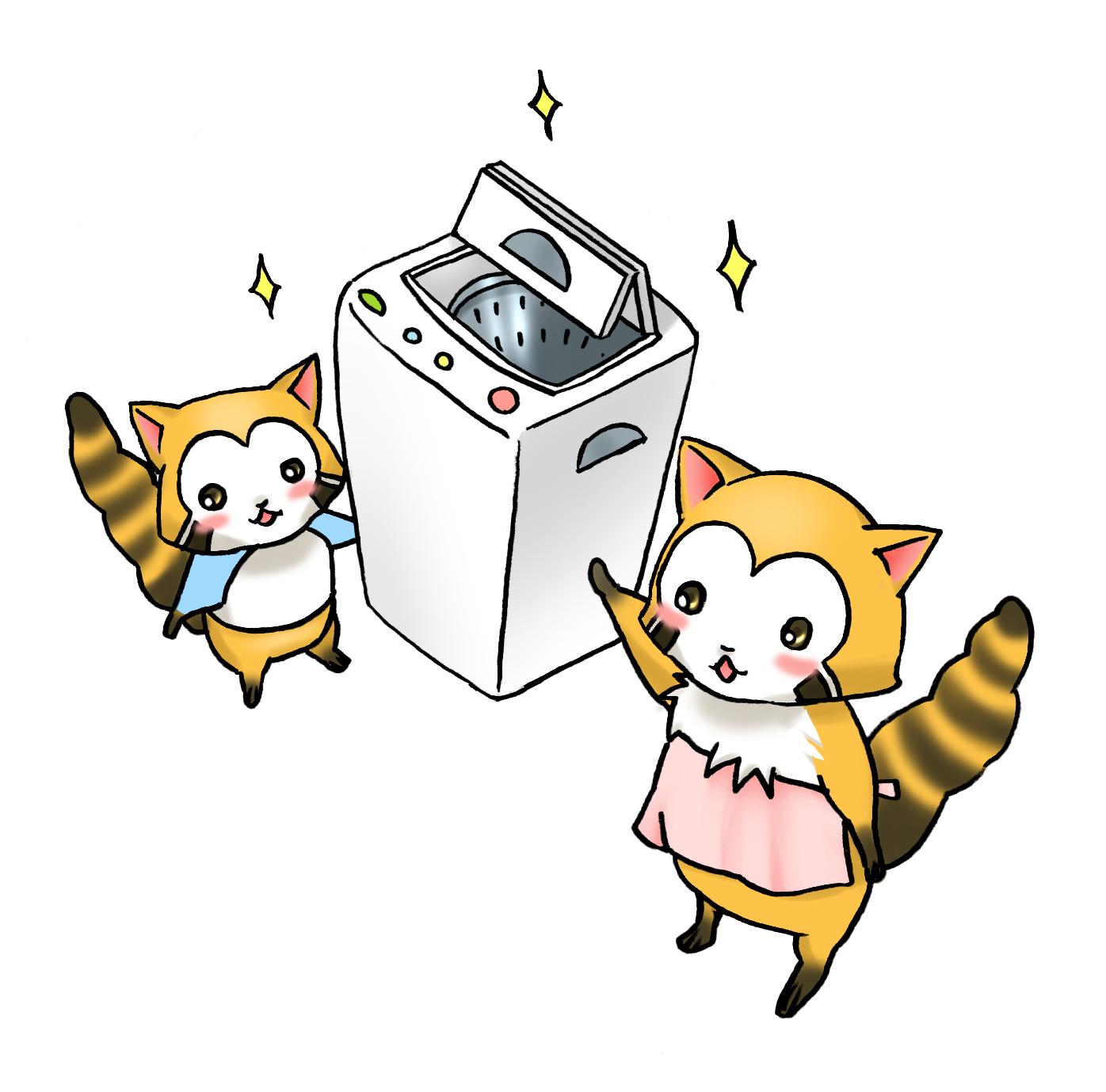 アライグマ洗濯機